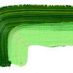 green earth 504
