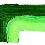 Sap green 506