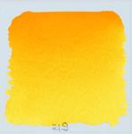 turner's yellow 219