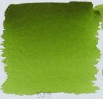 olive green yellowish 525