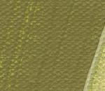 Olive green 558