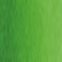 530 Sap Green